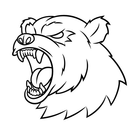 fang: Illustration of the angry bear head. White background. Vector