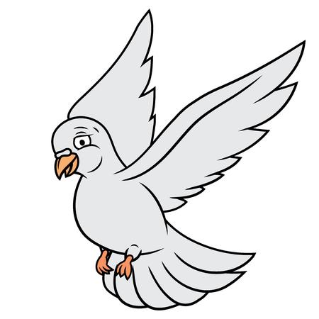 Illustration of the flying white dove. White background. Vector