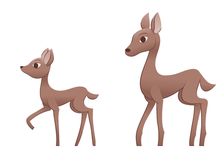 mother and baby deer: Illustration of the mother deer and fawn. White background