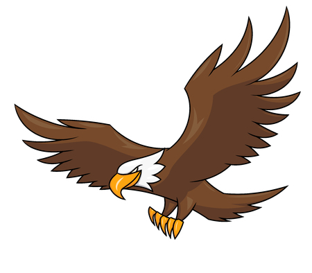 eagle flying: Illustration of the flying eagle on white background Illustration