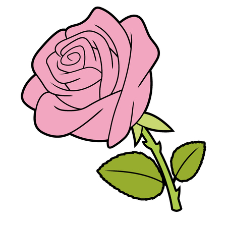 Illustration of a pink rose isolated on white background