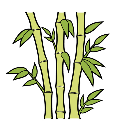 Illustration of green bamboo stems and leaves on white background Ilustração