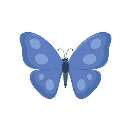 Illustration of a blue butterfly on a white background
