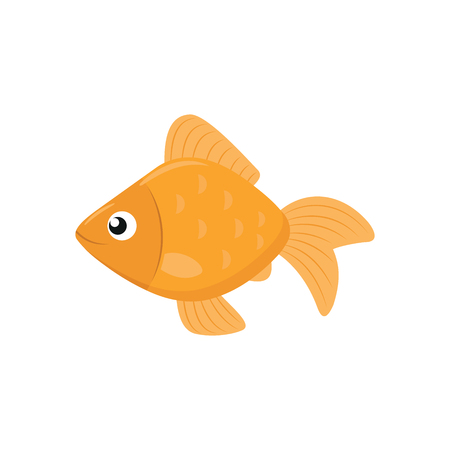 Illustration of a cute goldfish on a white background