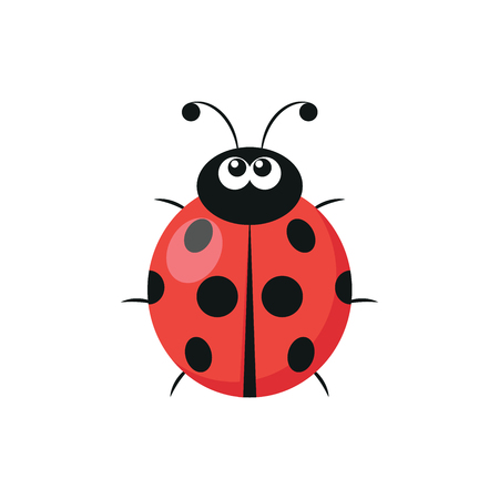 Illustration of a cute ladybug on a white background