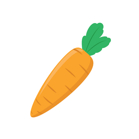 Illustration of a carrot on a white background Çizim