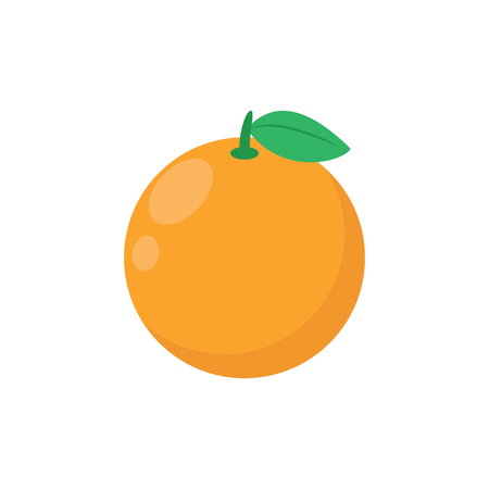 Illustration of an orange on a white background