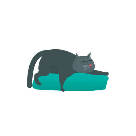 Cat. Cat sleeping on a pillow, vector illustration