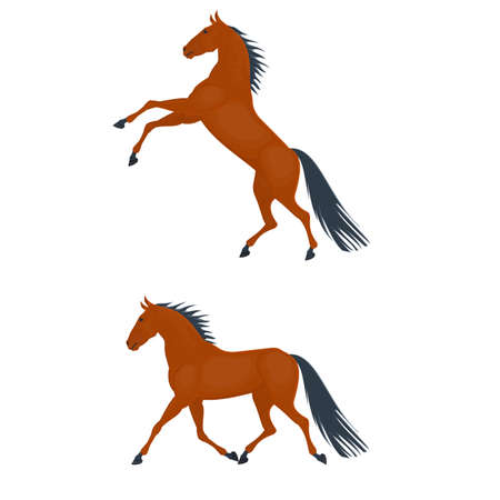 Horse. Running horse, vector illustration