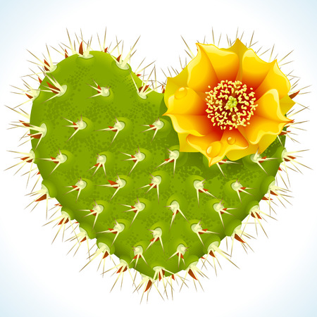 succulent: thorny cactus in the shape of heart and yellow flower Illustration