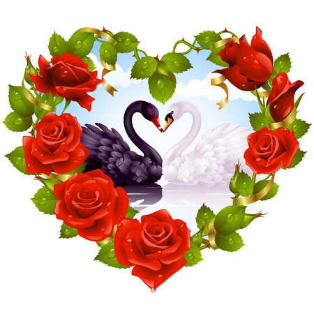 swans: Red Rose frame in the shape of heart and couple swans