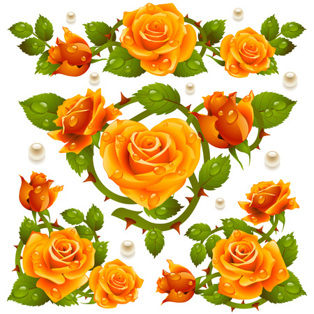 roses pattern: Orange Rose design elements