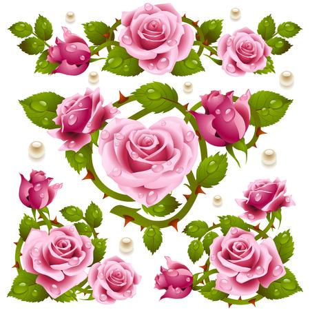 róża: Elementy projektu Rose Ilustracja