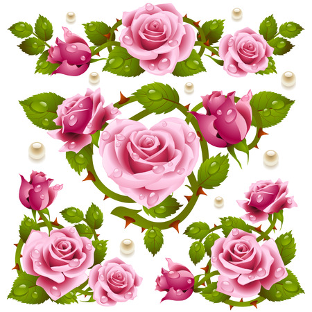 roses pattern: Rose design elements Illustration