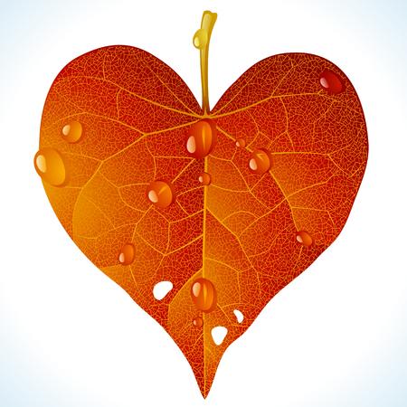 Autumnal love Illustration