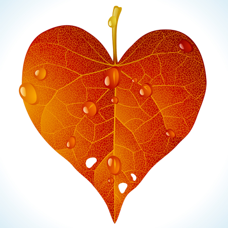 yellow leaves: Autumnal love Illustration