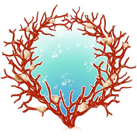 corales marinos: Marco rojo coral  Vectores
