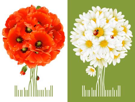 kamille: Floral Gru�karten  Illustration