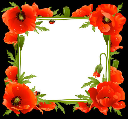 herbage: Poppy Floral Frame