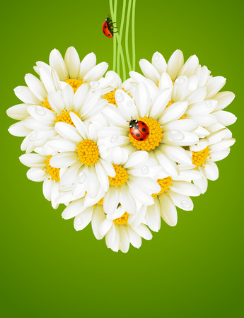 Floral love card. camomile heart