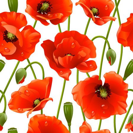 Seamless background: poppy Vector