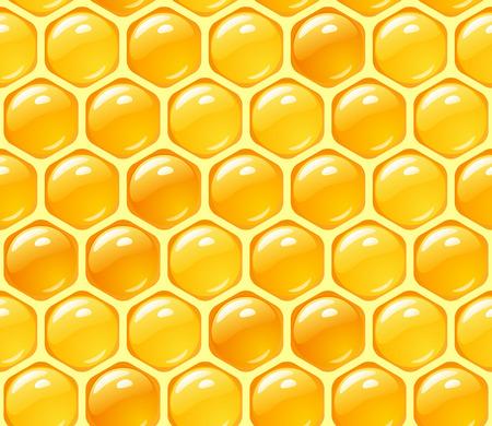abejas panal: Fondo de miel  Vectores