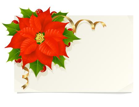 flor de pascua: Tarjeta de Navidad con Euphorbia pulcherrima, acebo y cintas de oro
