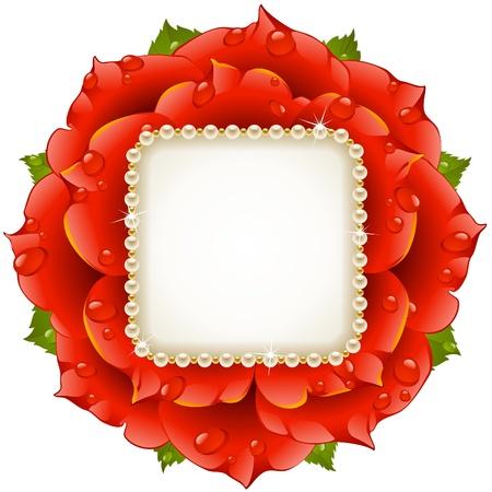 róża: Czerwona Róża klatkÄ™ okrÄ™gu
