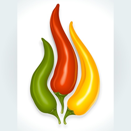 Hot chili pepper in the shape of fire sign isolated on white background