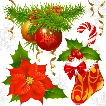 flor de pascua: Decoración de Navidad