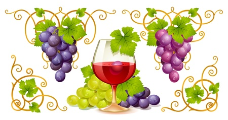 Grape elements, corners and wine glass Vector
