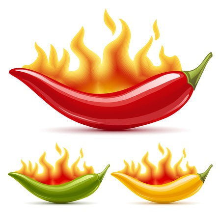 Green, yellow and red hot chili peppers Vector