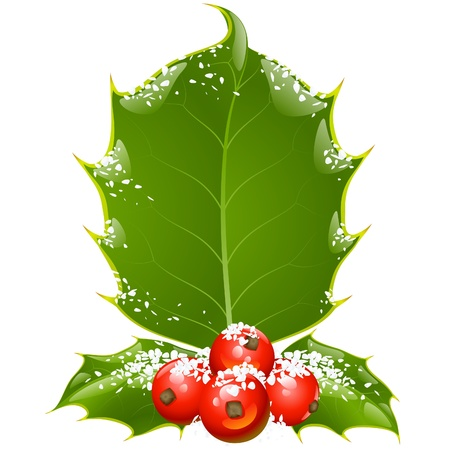 Christmas and New Year background. Vector holly frame isolated on white Stock Vector - 11222515