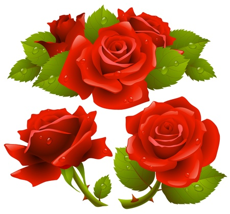 Red roses set Stock Vector - 11902763