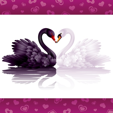Two graceful swans in love: black-and-white heart Vector