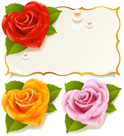 rosas naranjas: Tarjeta de felicitaci�n con rosa en forma de coraz�n Vectores