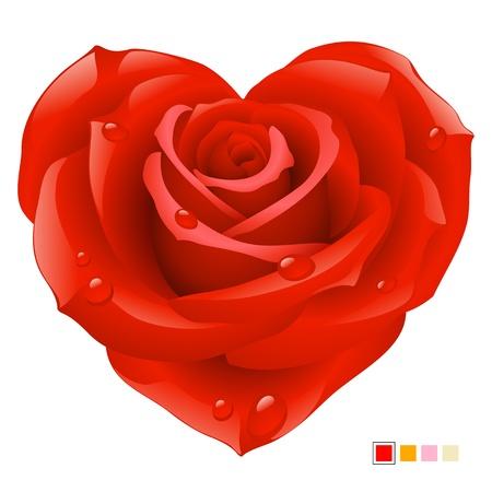 심장 모양의 빨간 장미 일러스트