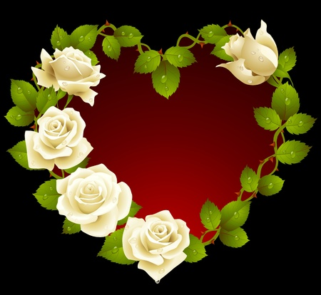 Framework from white roses in the shape of heart Vector