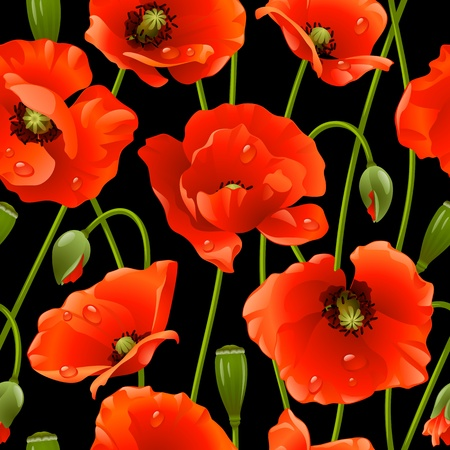 Seamless background poppy Vector