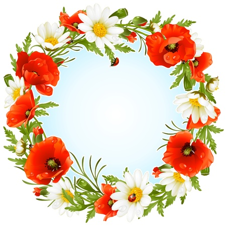 camomiles: Vector camomile and poppy frame in the shape of circle