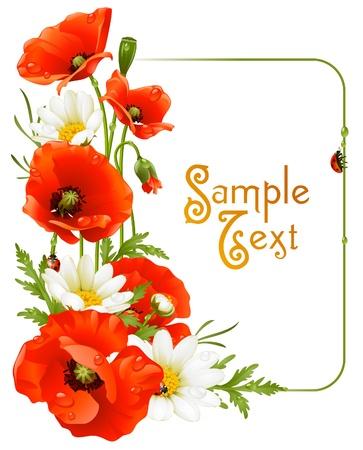 мак: Векторный цветок кадр 8. Маки и ромашки Иллюстрация