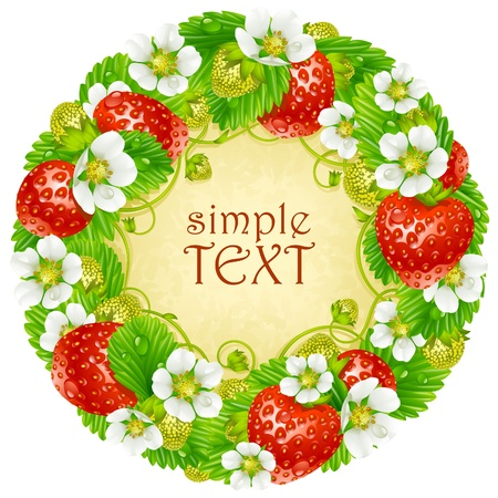 Vector strawberry circle frame. Red berry and white flower Stock Vector - 12796751