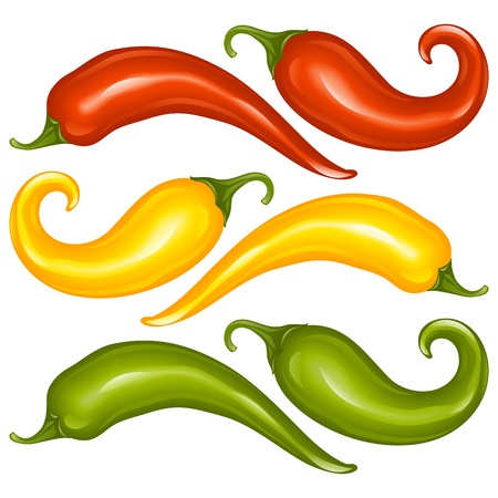 Hot chilli pepper vector set isolated on white background  Red, yellow and green  Vector