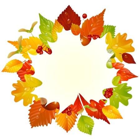 otoño marco con la hoja de otoño, castañas, bellotas y ashberry