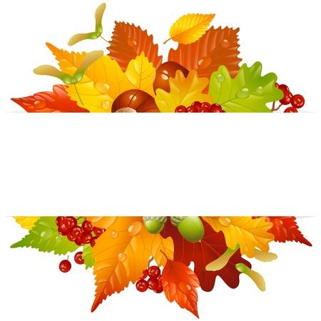 가을 잎, 밤, 도토리와 ashberry 열매와 가을 프레임