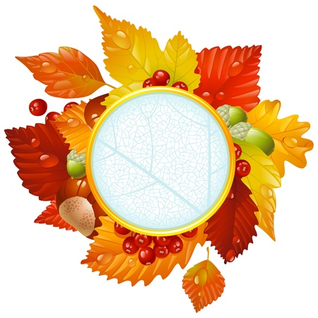 Autumnal round frame with fall leaf, chestnut, acorn and ashberry Vector