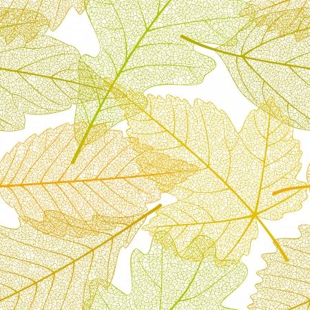 foglie di quercia: Foglie d'autunno Seamless modello