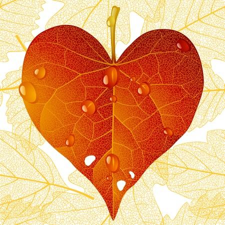 fallen: fallen red leaf in the shape of heart Illustration