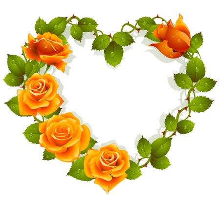 심장의 형태로 오렌지 장미에서 프레임 워크