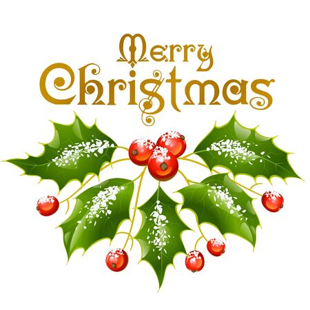 Christmas and New Year Vector holly decoration isolated on white Stock Vector - 16307831